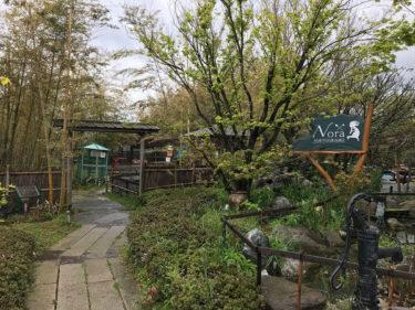 農園レストラン Nora|福井県坂井市